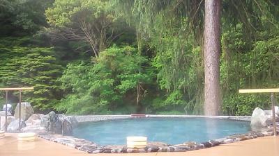 森と川と露天風呂(たぶん星空も綺麗なはず!)