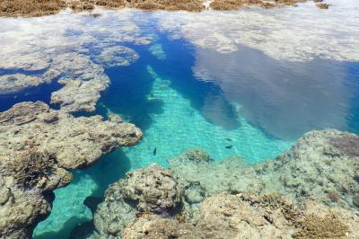 沖縄本土のシュノーケルが楽しい綺麗な海