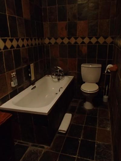 バスルームです シャワーブースはないので、びしょびしょになる