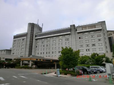大きな観光ホテル