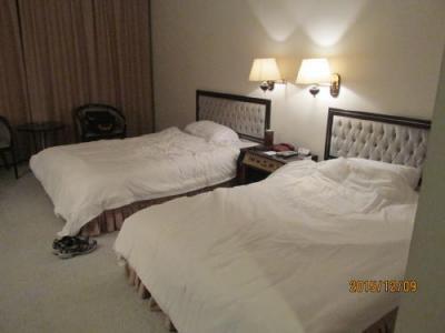 大型ベッドが2台。
