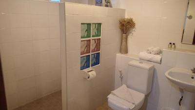 給湯機式のシャワーのみですが、清潔に保たれています。