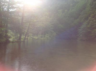 静かな佇まいの池!