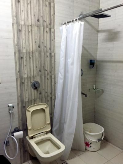 シャワーはカーテンだけで床は水浸しです。