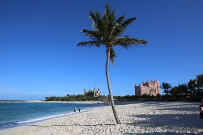 綺麗なビーチから