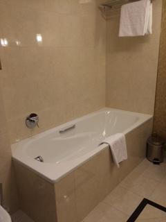 バスタブあり。トイレと同じ部屋でシャワーカーテン無し。