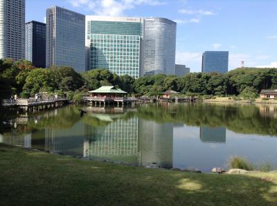 東京大茶会でお茶やお花も楽しめます