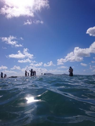 天使の海 でもクラゲに注意