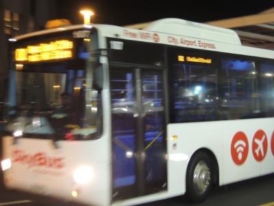 空港からの限られた交通手段、sky bus