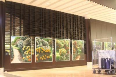 ニュージーランドの花々の写真パネルが並んだフロント。