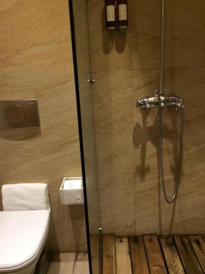 シャワーオンリーでバスタブはありません