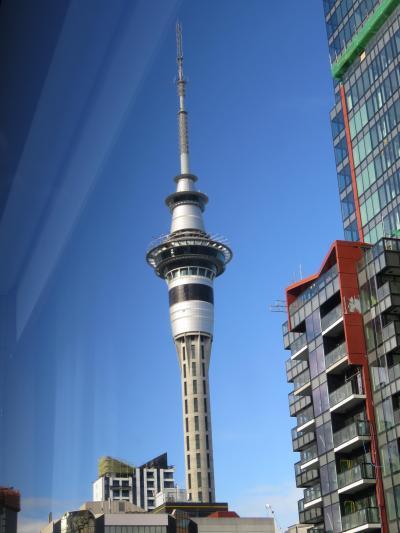 晴れた日には、スカイタワーが綺麗に見える部屋でした