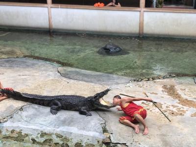 絶対行くべきな動物園