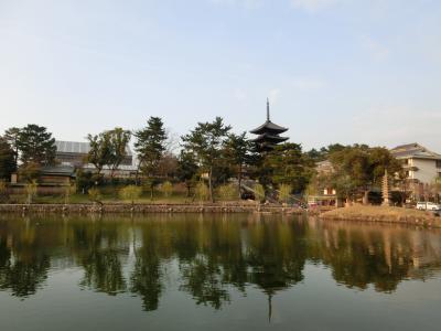 池に映し出される景色がステキ