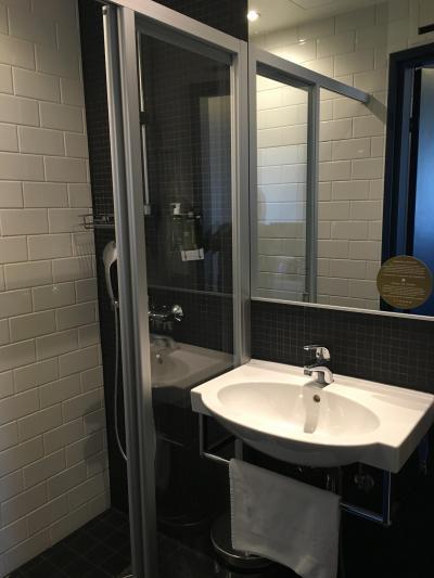 シングルルーム。バスタブなし。シャワーは可動でした。