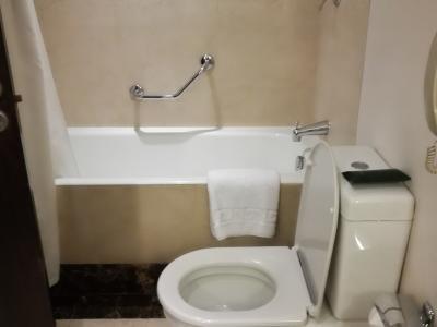 シャワーは固定式です。