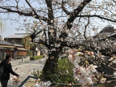 駅近で祇園っぽさを満喫できる場所