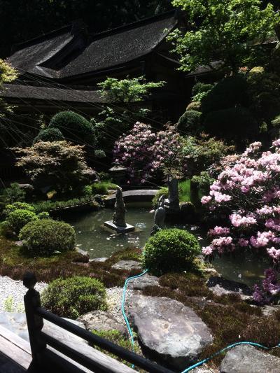 高野山●金剛三昧院 建物と景色が楽しめる