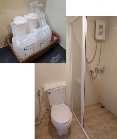 浴槽以外は揃ってます。シャワーのお湯の出も問題なし。