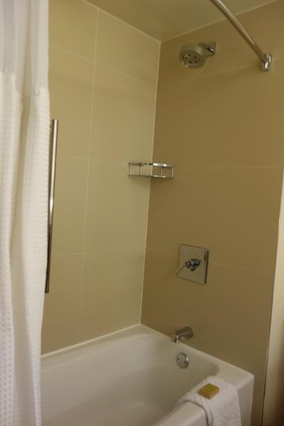 バスタブは広く、シャワーは固定です。