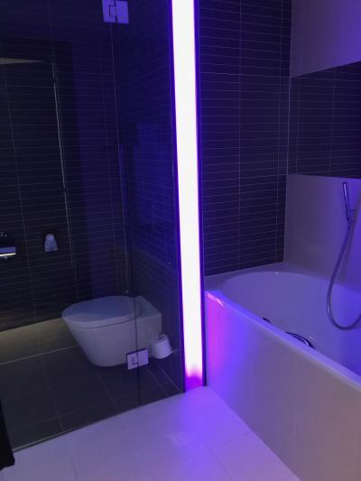 トイレもガラス張り(;'∀')右はバスルームでこっちもガラス