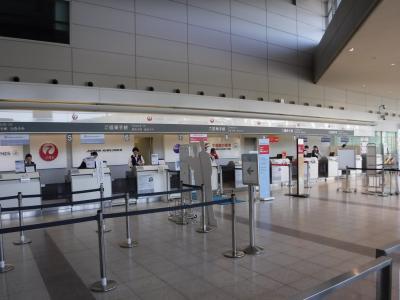いつもの地方空港でが便利です。