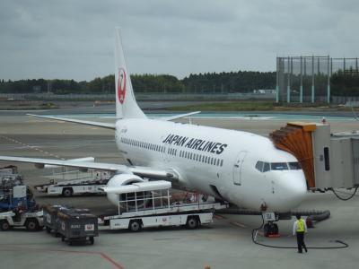 海外の航空会社と比べると良いのだけど、、、