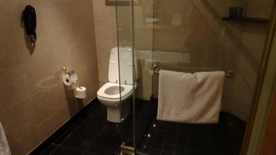 トイレは独立、もちろんシャワールームもあります