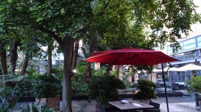 なんと言っても中庭が素敵です