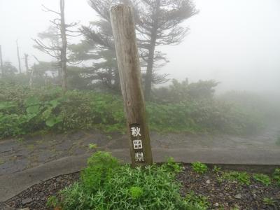 口コミ通りに霧で何も見えず・・・