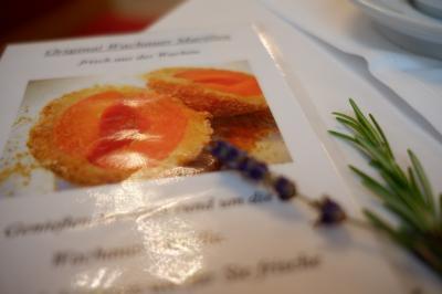 団体旅行客向けだと侮るなかれ、季節のメニューも豊富で美味しいメルク修道院のレストラン♪