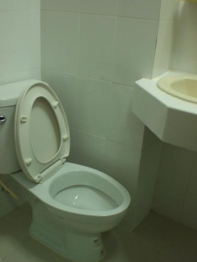 トイレは、やや暗い感じがしますが、掃除が行き届いています。