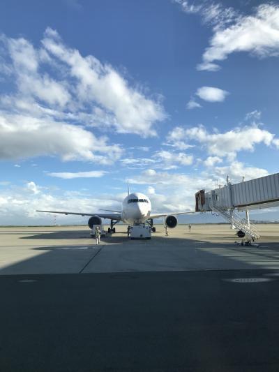 小さくても綺麗な空港