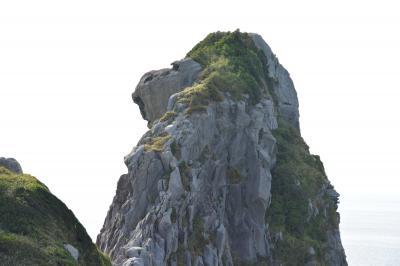 猿というかゴリラ岩