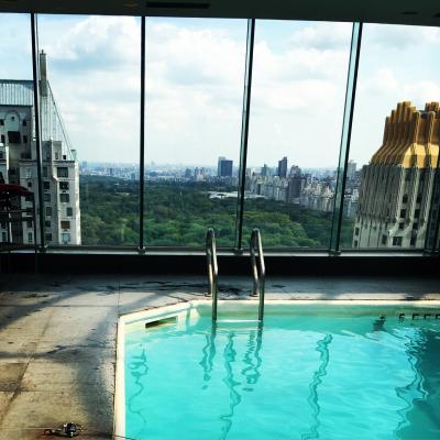眺めが良いプール