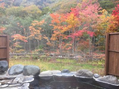 紅葉、温泉が素晴らしい!