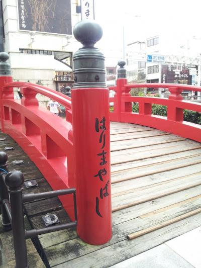 いきなり現れる橋
