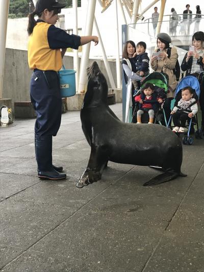 大好きな水族館