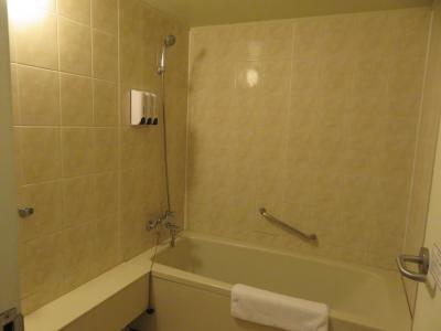 バスルームは広々、シャンプー、リンス、ボディソープあり