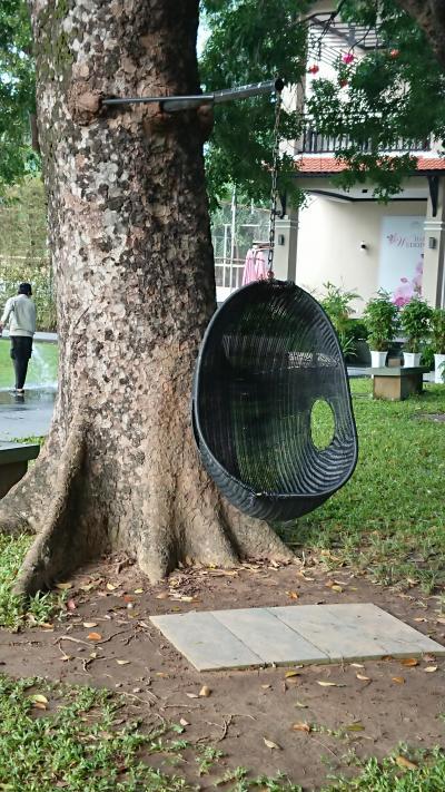 庭の木に揺り籠が…