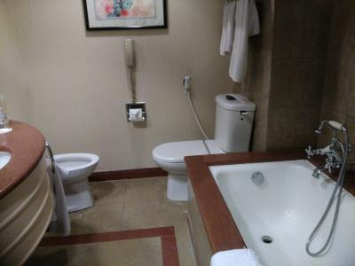 バスタブの他、シャワースペースもある