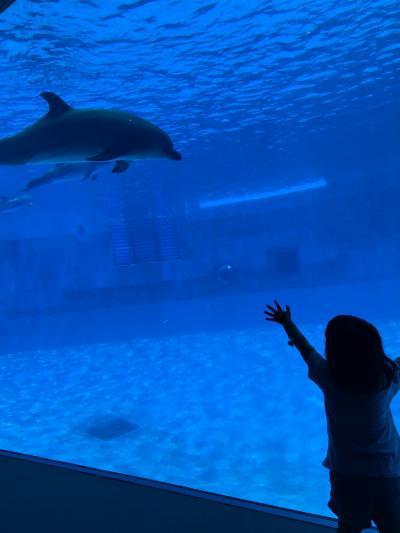 大きな水族館