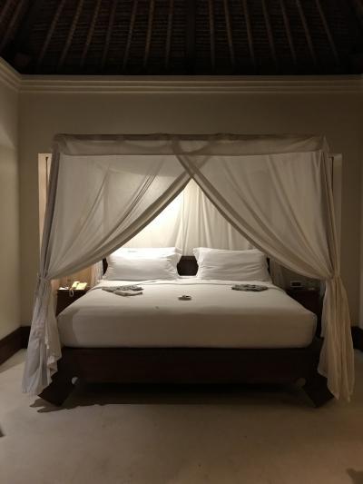ベッド。部屋が広くて落ち着かないので、寝るときは天蓋を降ろし
