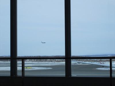 空港だけで一日楽しめる!