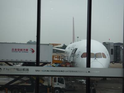 短い時間のフライトならば許容範囲のサービス