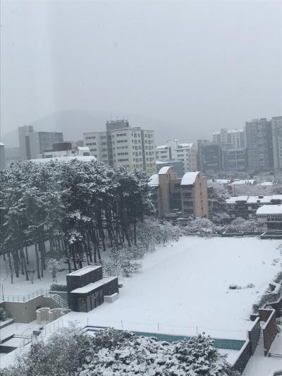 行ったのはチェジュでも珍しく雪の日
