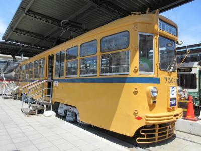 Lrg 16491230