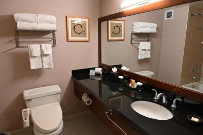 バスルームの洗面と温水ウォシュレット