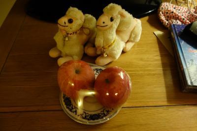 かわいいラクダとウエルカムフルーツ、嬉しいプレゼント