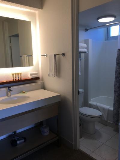 洗面台は広くバスルームは狭い